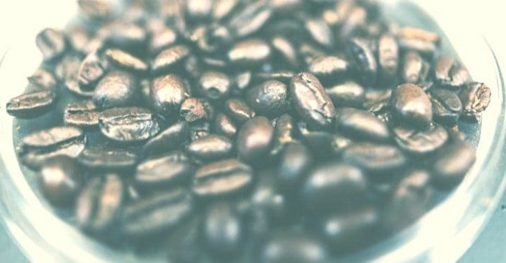 fresh coffee beans in a container