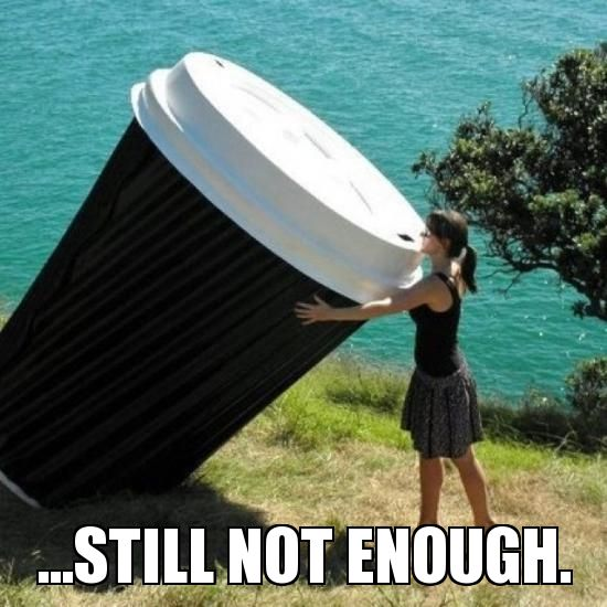 Giant Cravings 45 funny coffee memes that will have you laughing home grounds