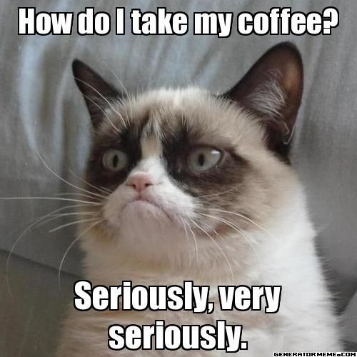 The Return of Grumpy Cat 45 funny coffee memes that will have you laughing home grounds