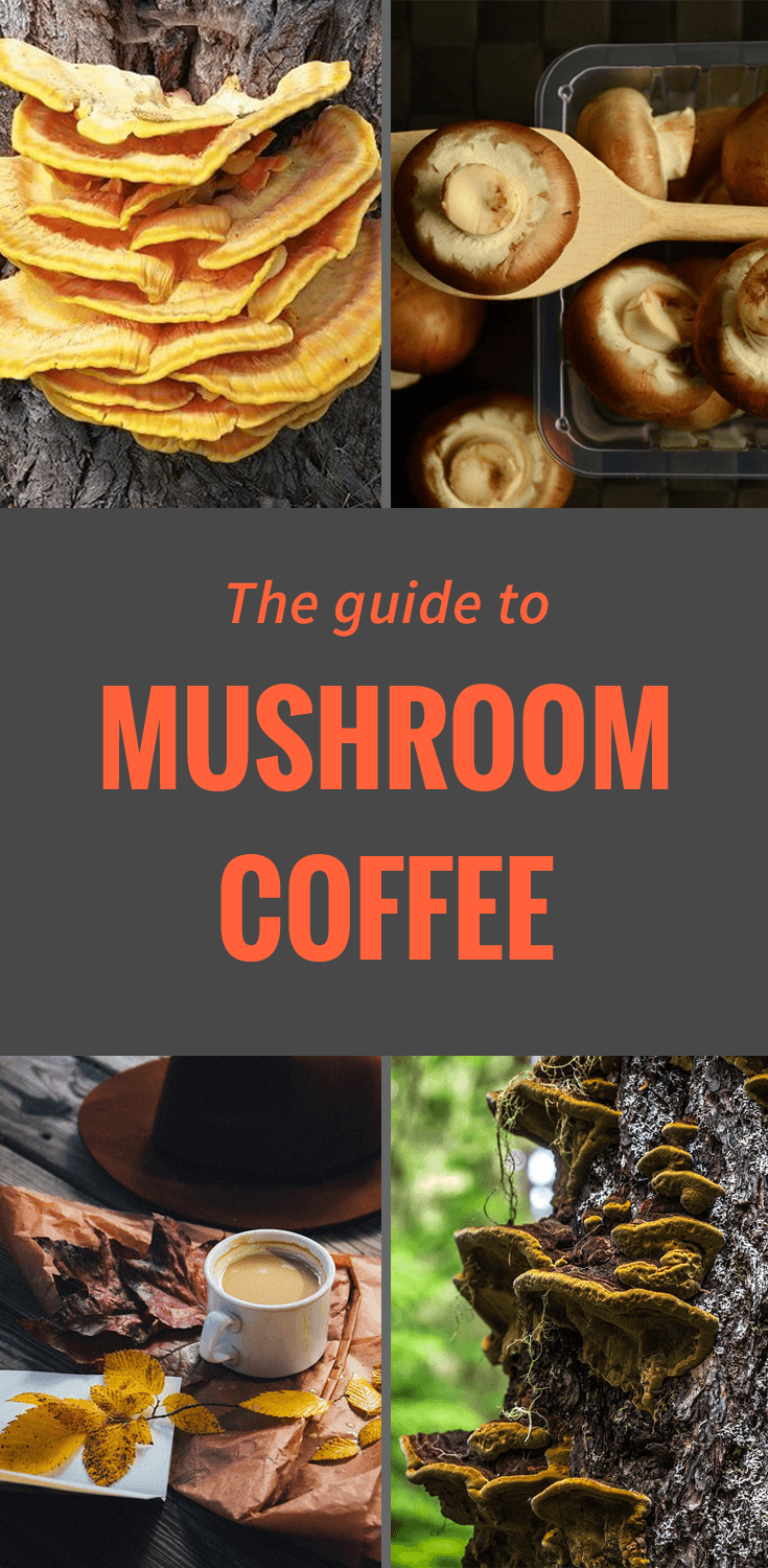 Mushroom coffee tastes great, but I bet you didnt know it has these AMAZING health benefits. Click to read and find out about mushroom coffee