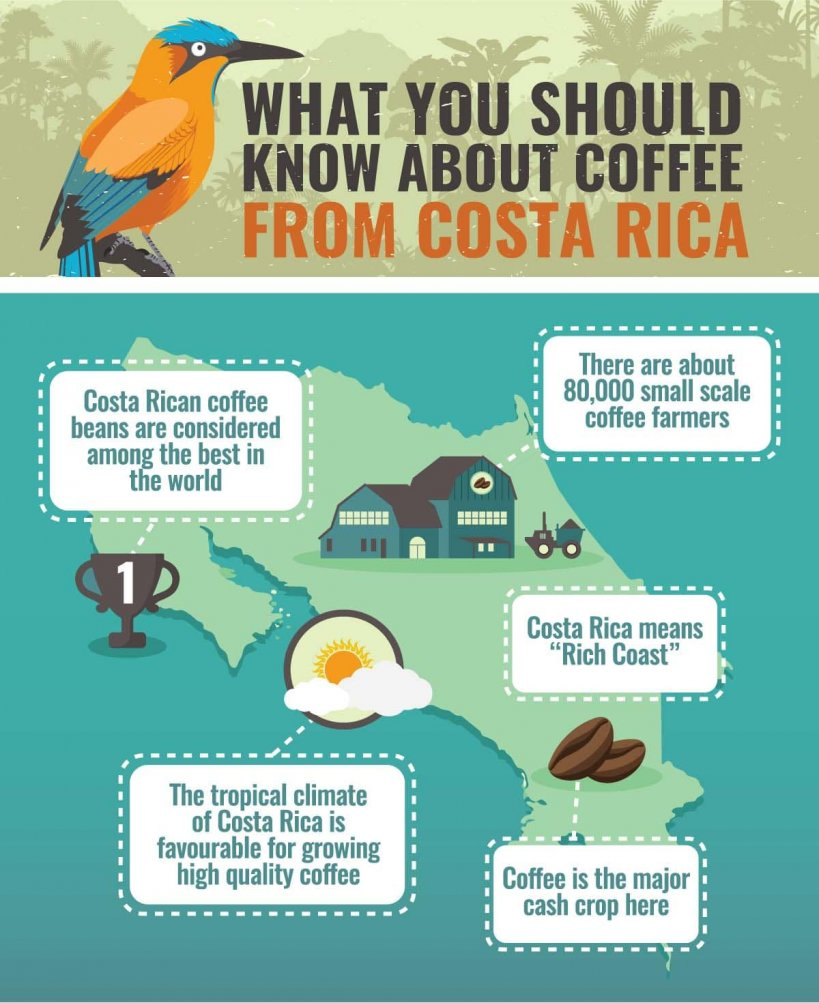 Facts About Costa Rican Coffee