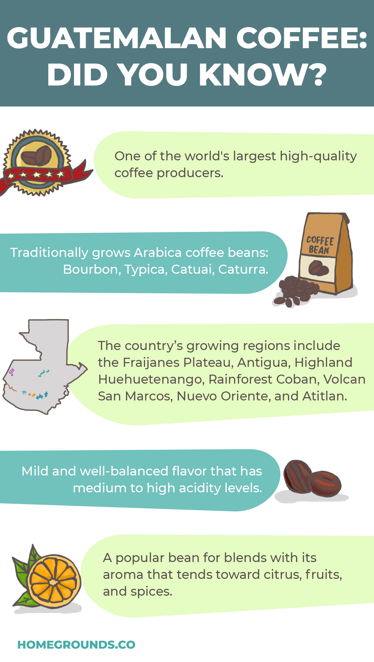 Buy Guatemalan Coffee Beans
