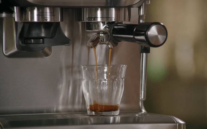 The Breville Barista Express Review A Look Into the Beautiful