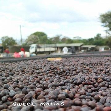 Coffee beans on the floor