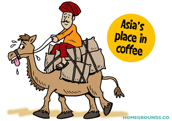 the history of coffee in asia began in the 17th century when a man rode a camel with sacks of coffee beans going to India