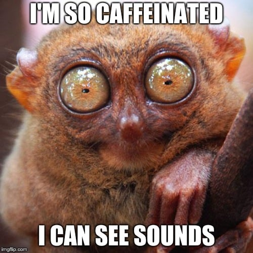 Meme of a very caffeinated animal