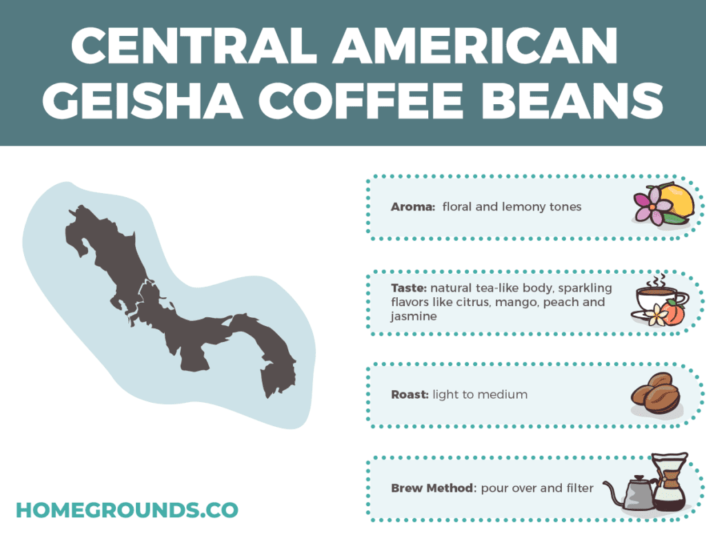 Central American Geisha Coffee Beans
