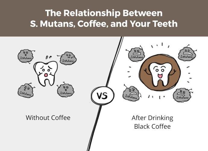 Răng bị vi khuẩn tấn công