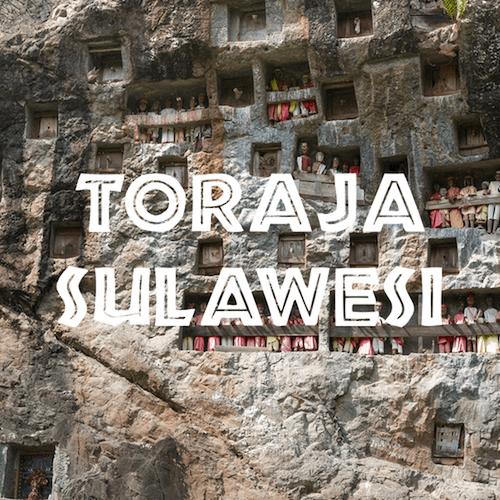 Toraja Sulawesi coffee poster