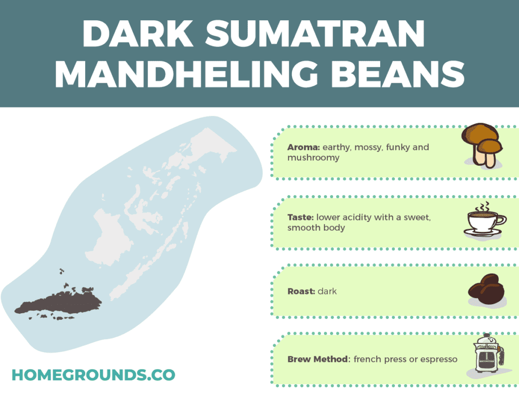 Dark Roast Sumatra Mandheling Beans From Indonesia
