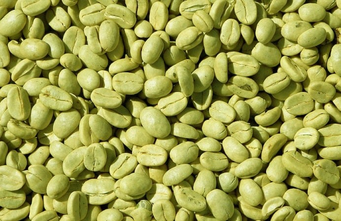photo of green coffee beans