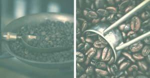 Scoop of Black Roasted Coffee