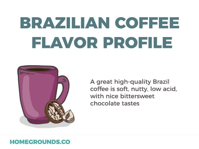 brazilian coffee beans flavor profile