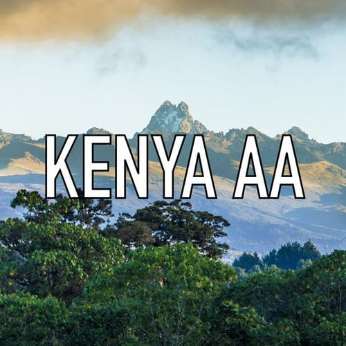 Kenya AA coffee bean label