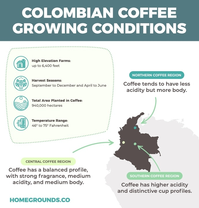 Information about coffee