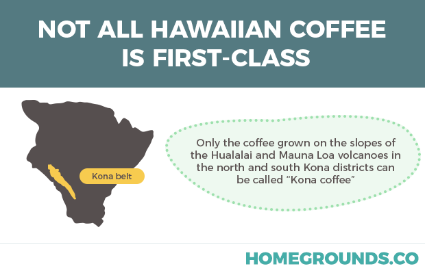 facts about hawaiian coffee and kona brands