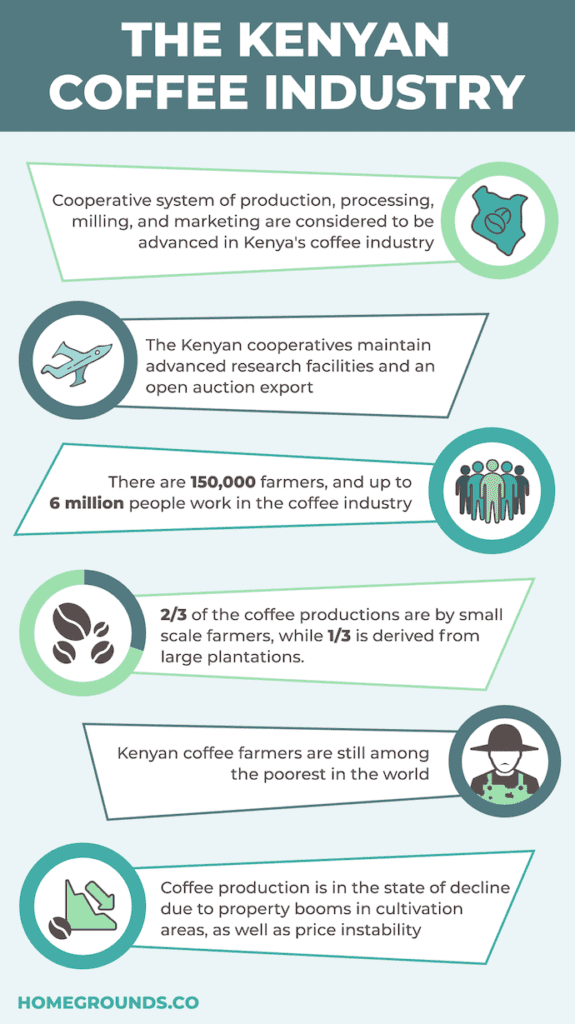 kenya coffee bean industry facts