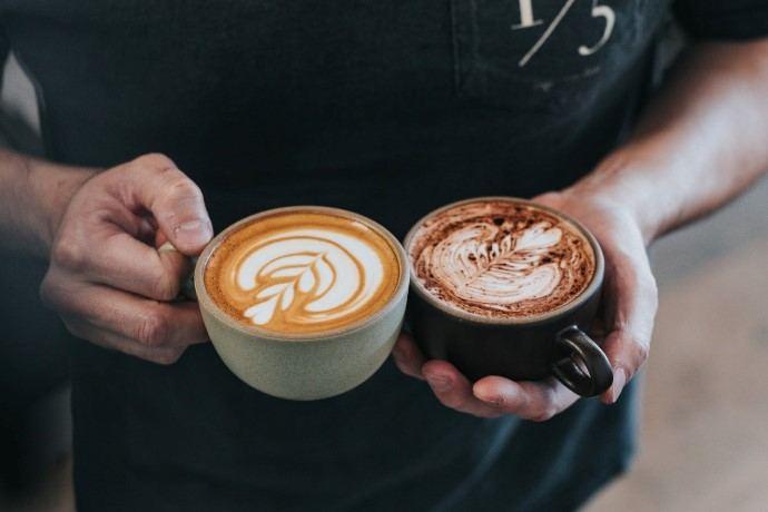 mocha vs latte compared side by side