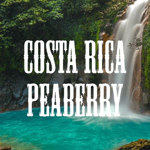 Costa Rica Peaberry