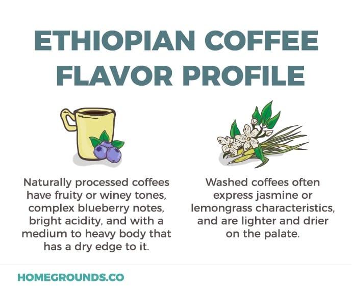 Ethiopian Flavor Profiles