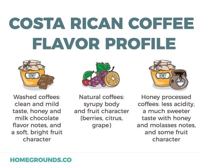 Costa Rica Flavor Profiles