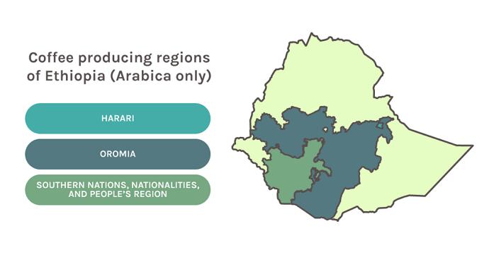 Map Of Ethiopia's Coffee Producing Regions