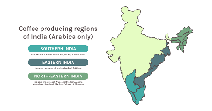 Map Of India's Coffee Producing Regions