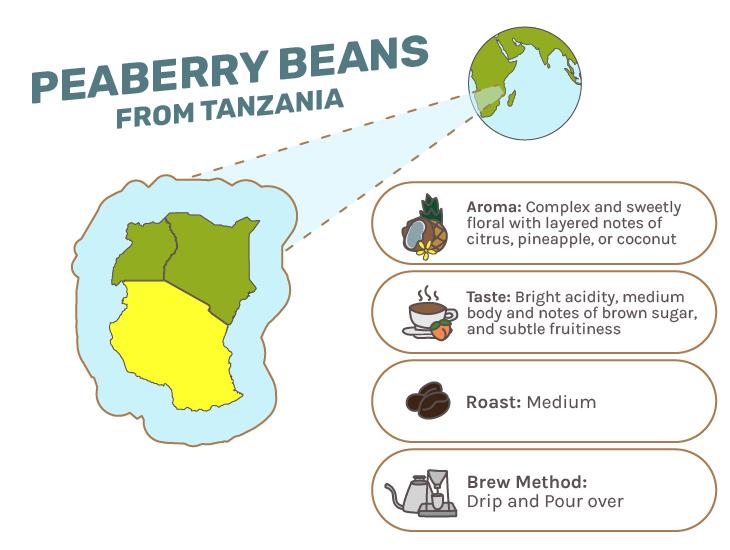 Tanzanian Coffee Beans