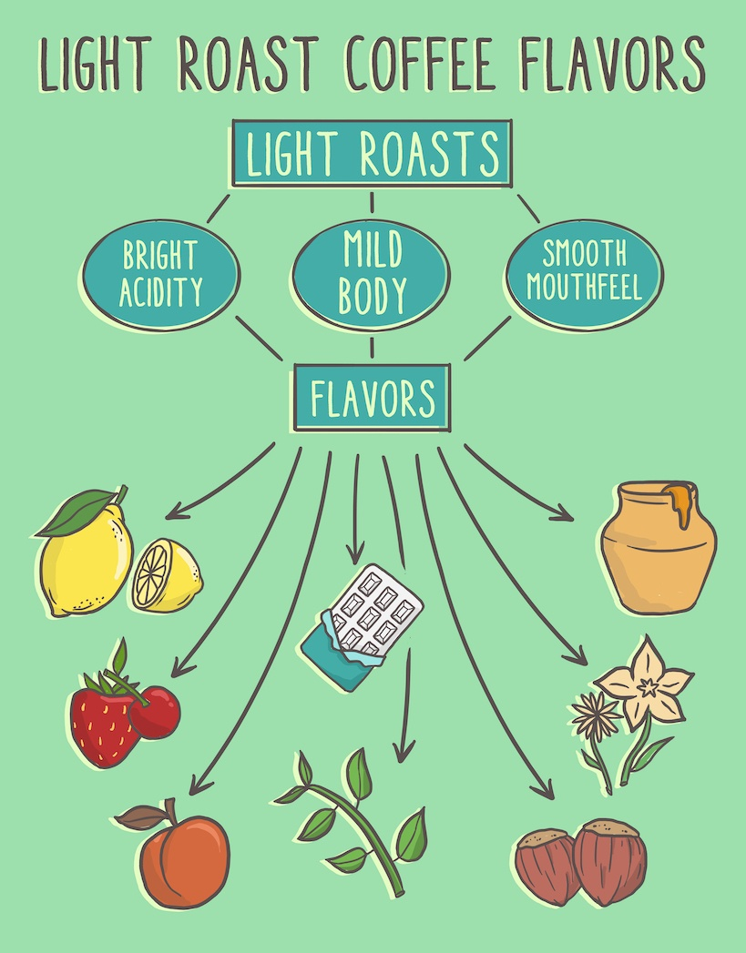 flavors that make the best light roast coffee beans