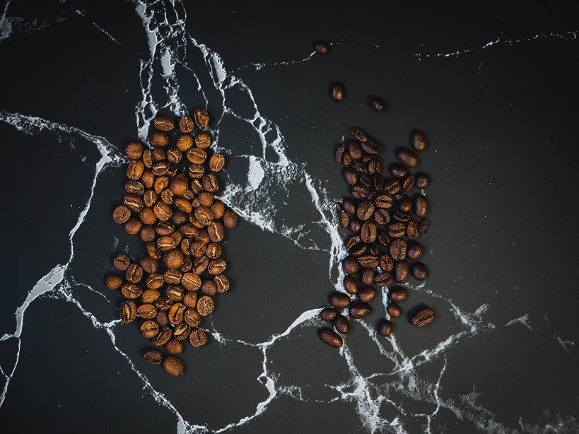 Light roast coffee in light brown color with no oil on the surface and dark roast whole bean coffee with visibly oily surface