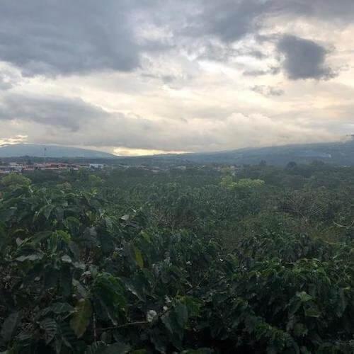 Costa Rica San Isidro