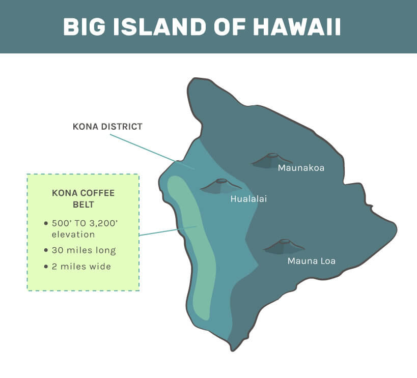Island of Hawaii where 100 Kona coffee is grown: mauna loa, hualalai, maunakoa