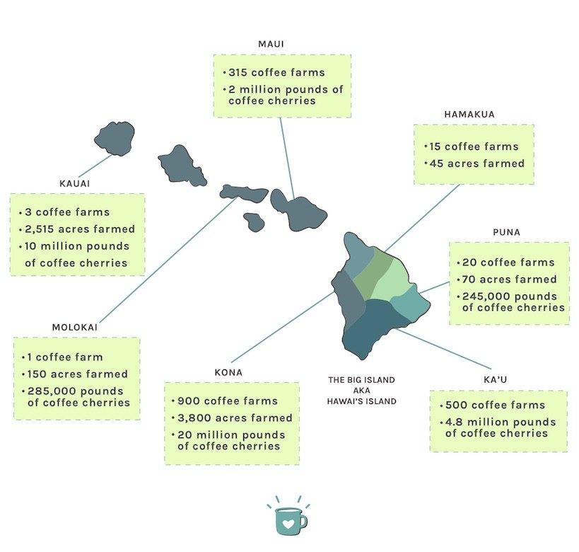 hawaiian coffee regions and coffee industry facts