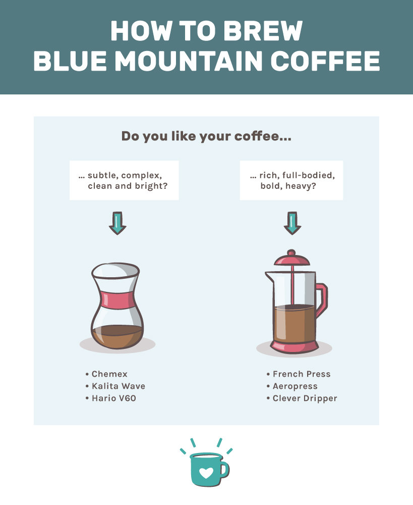 how to brew blue mountain coffee with a Chemex or French Press
