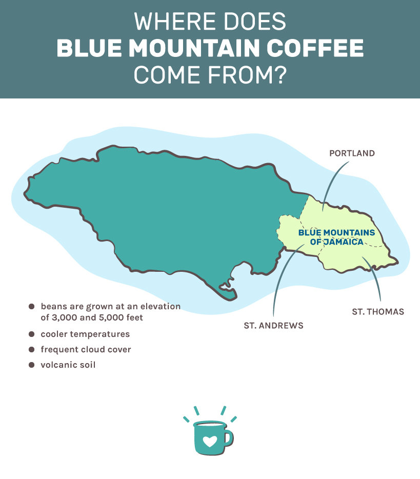 where does blue mountain coffee come from?