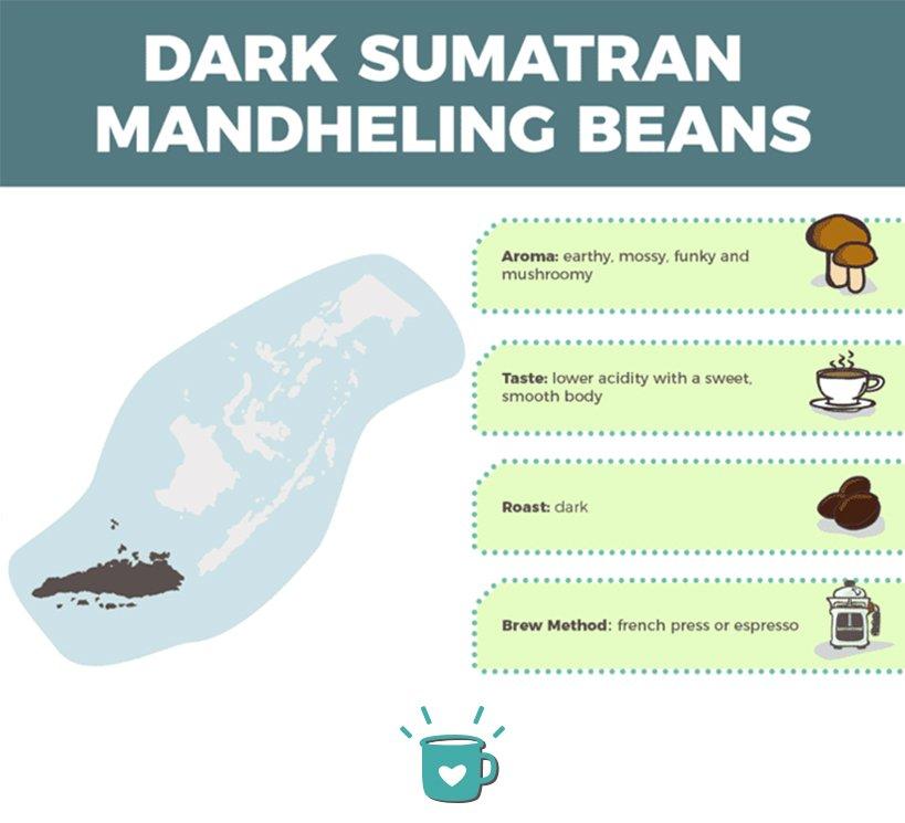 dark sumatran mandheling beans