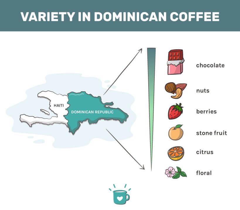 facts about dominican coffee