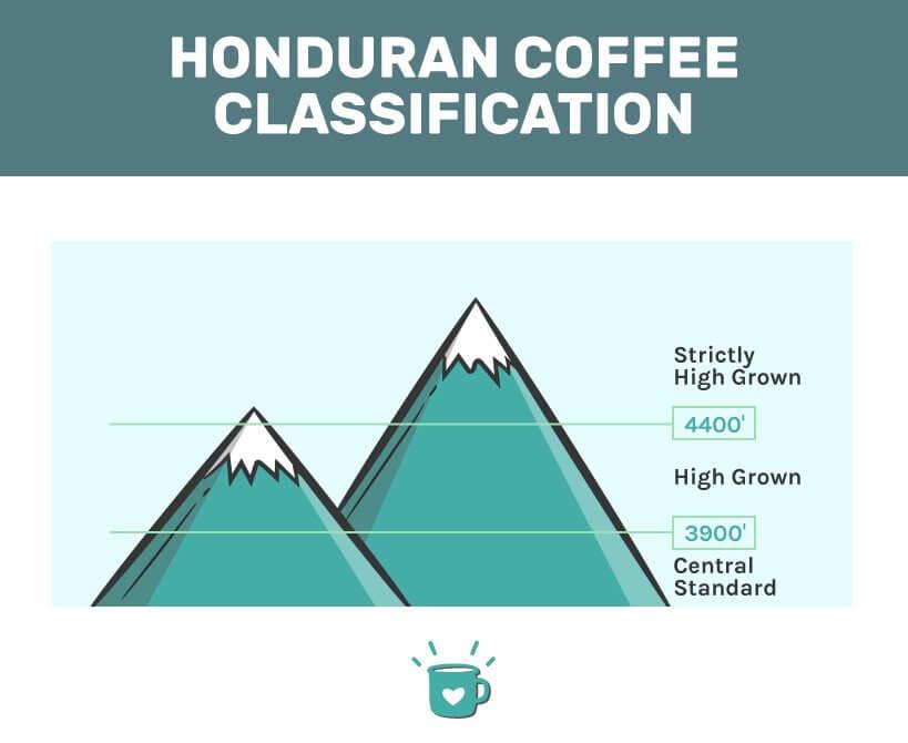 best honduran coffee classification