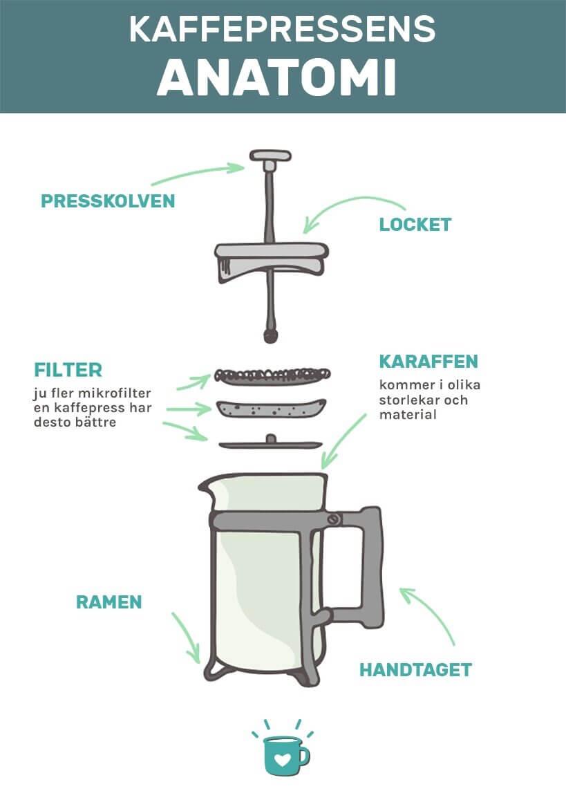 Kaffepressens Anatomi